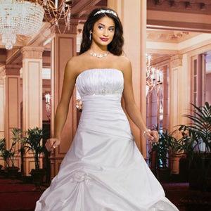 White Mary's Bridal Drop Waist Ballgown